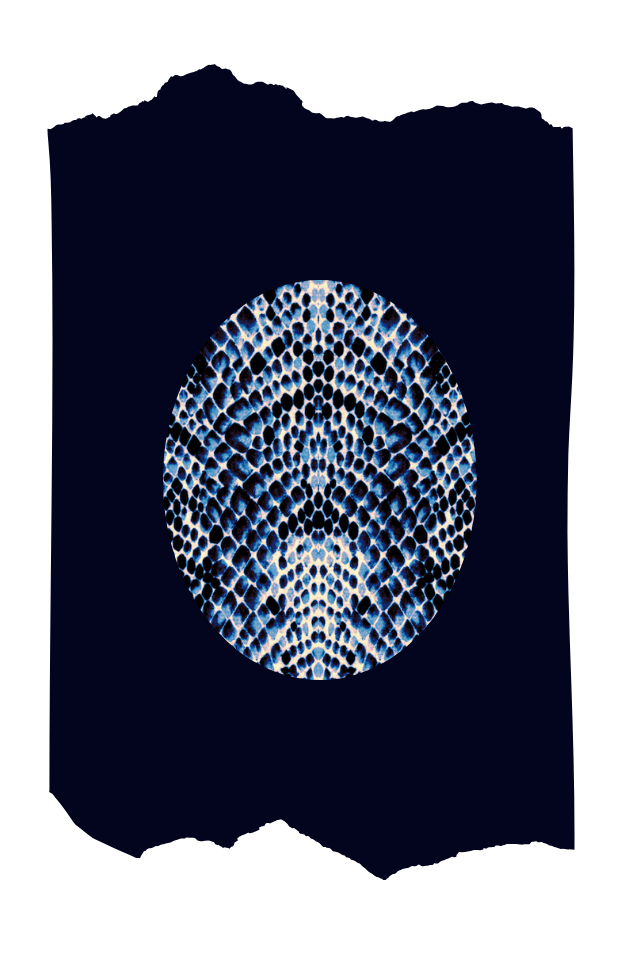 Pantis azul marino tupidos de fantasía con rodilleras de estampado de serpiente azul, colección animal print, modelo snake